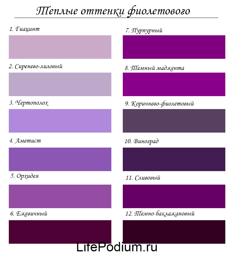 вся цвета фиолетовый и сиреневый фото как